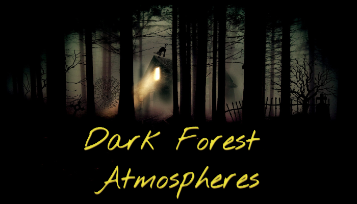 Dark Forest Atmosphere