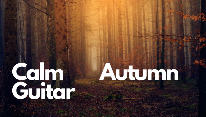 Autumn Guitar Loop
