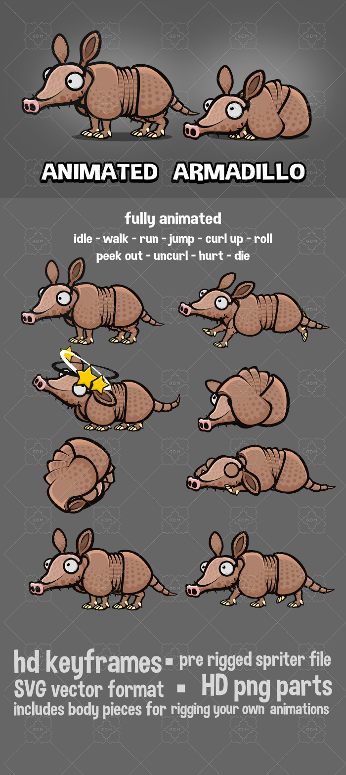 Animated armadillo