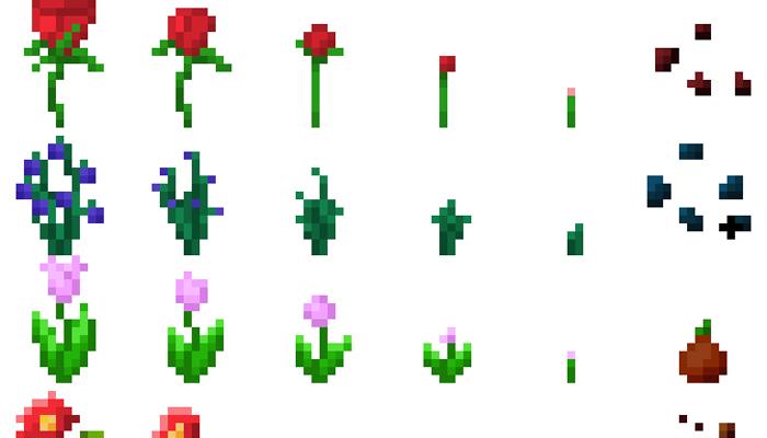 5 flowers crop [16px]