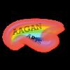 AaganArts