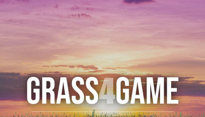 Grass 4 Game – Unreal Engine (UE4)