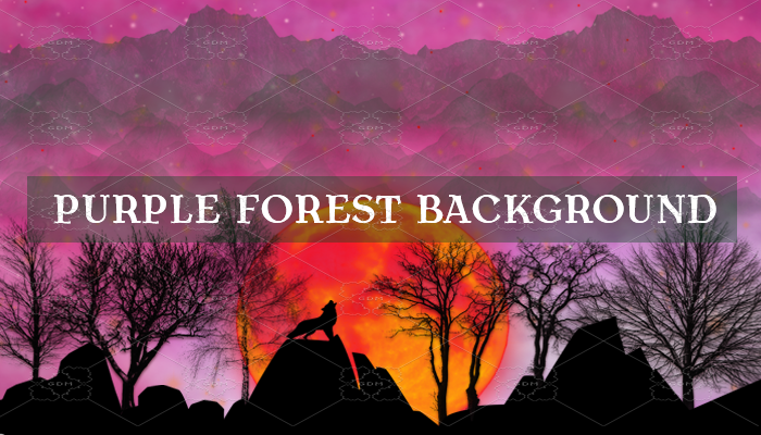 Purple Forest Background