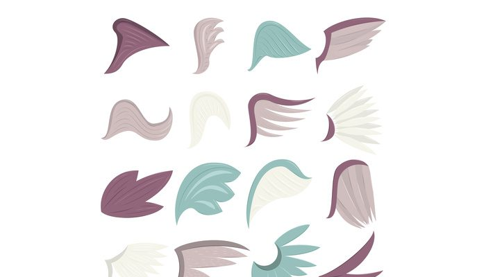 Wings icons set, cartoon style