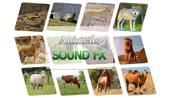 Animals SFX