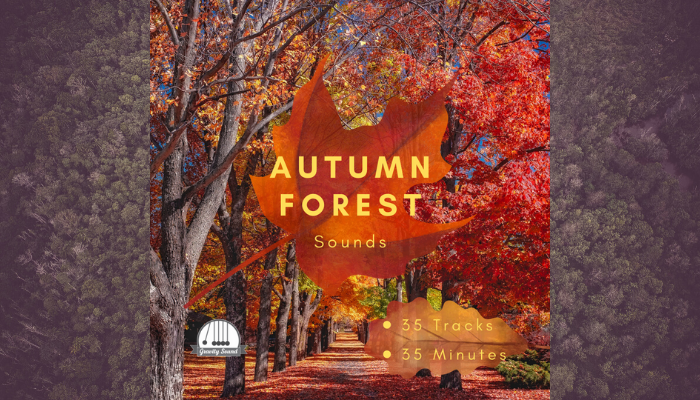 Autumn Forest Sounds
