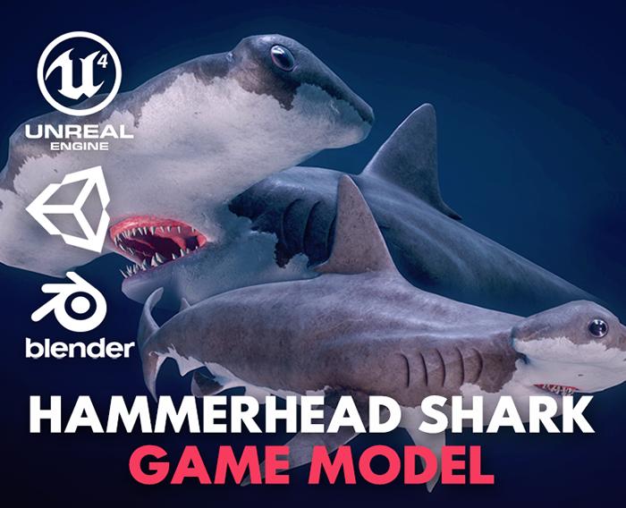 Hammerhead Shark – Game Ready