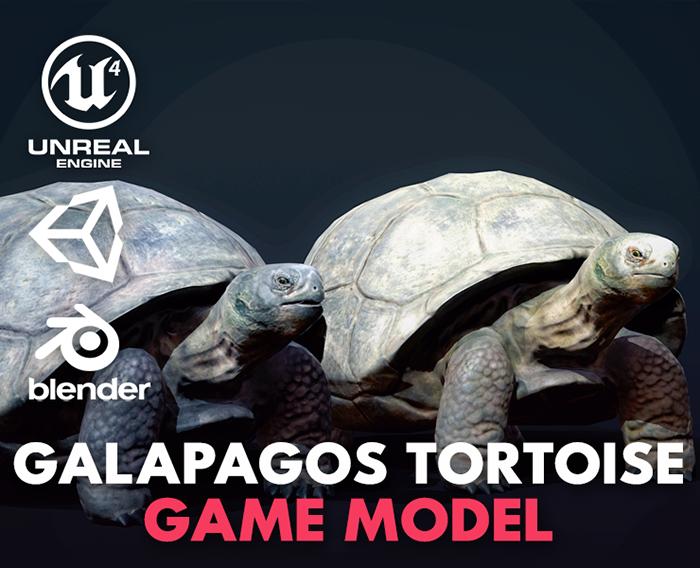 Galapagos Tortoise – Game Ready