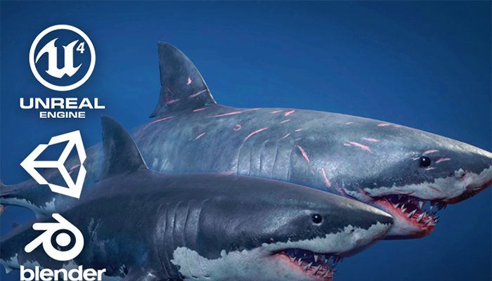 Great White Sharks – Game Ready