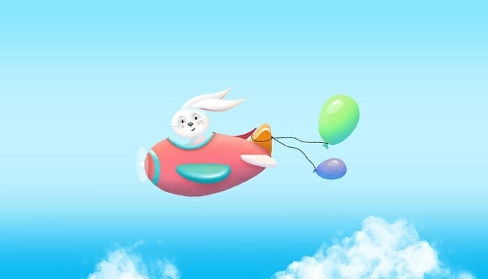 Aircraft with Bunny