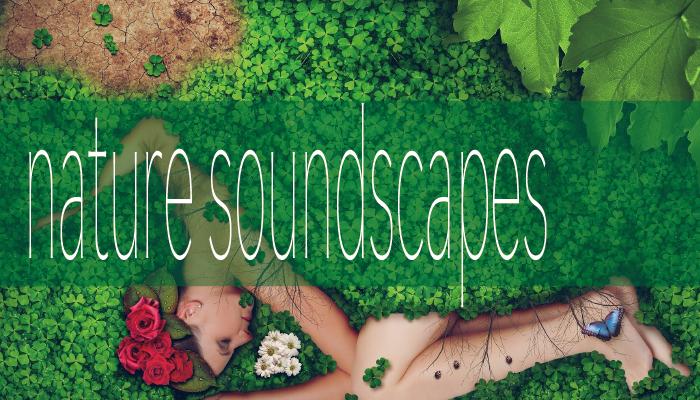 Nature soundscape