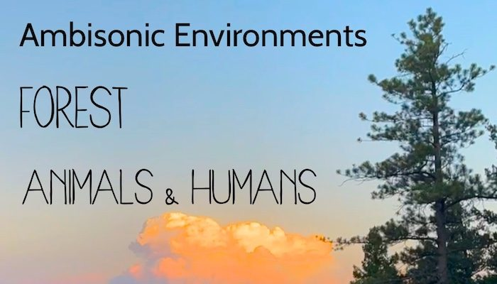 Ambisonic Environments: Forest Animals and Humans