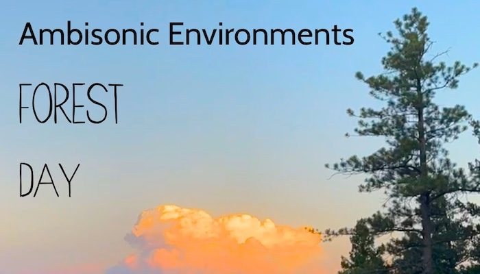 Ambisonic Environments: Forest Ambient Day