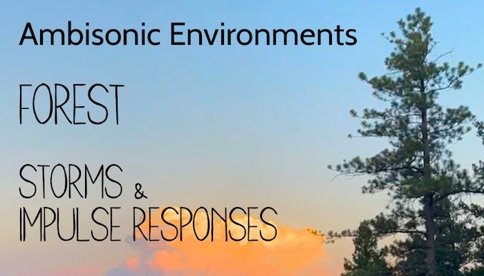 Ambisonic Environments: Forest Storms and Impulse Responses