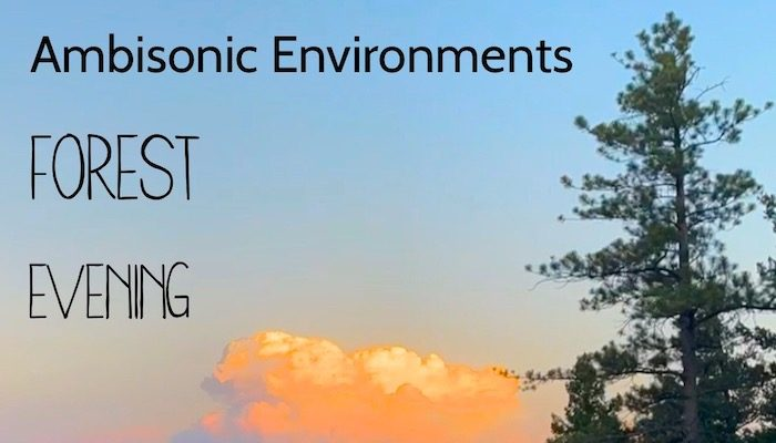 Ambisonic Environments: Forest Ambient Evening