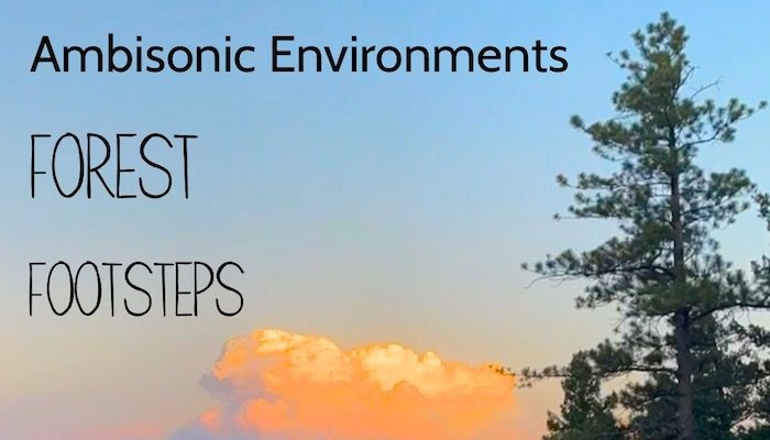 Ambisonic Environments : Forest Footsteps