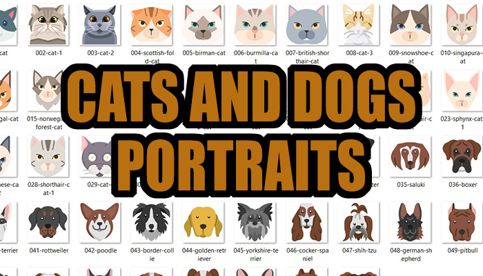 Cats and Dogs Portraits