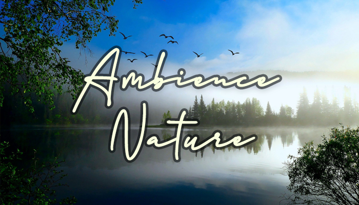 Ambient Video Game Music – Nature